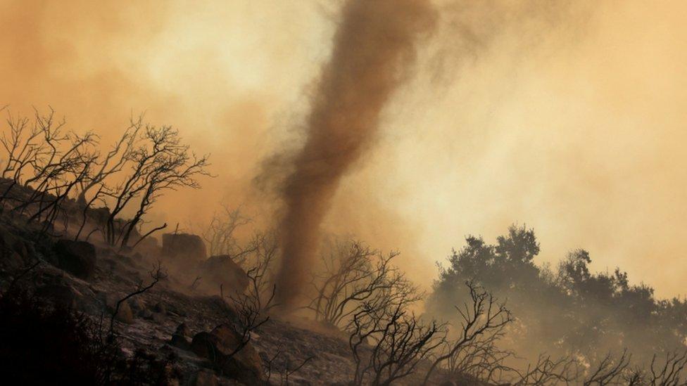 Un torbellino de cenizas calientes y brasas se mueve a través de un incendio forestal que arde en las colinas de Santa Bárbara, California.