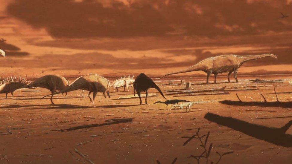 يعتقد أن الحفرية لديناصور عاش على الأرض قبل سبعين مليون سنة
