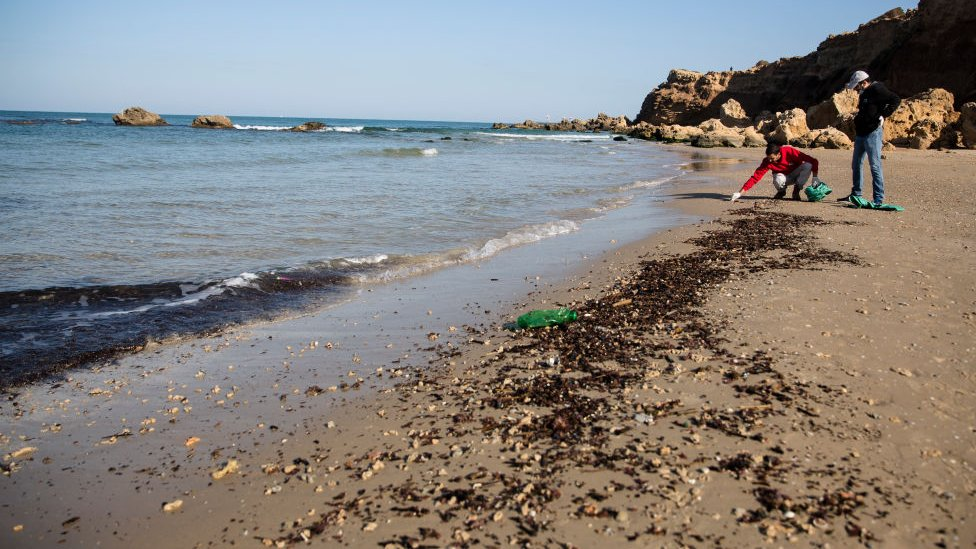 رجال ينظفون الرمال من القطران في الخضيرة