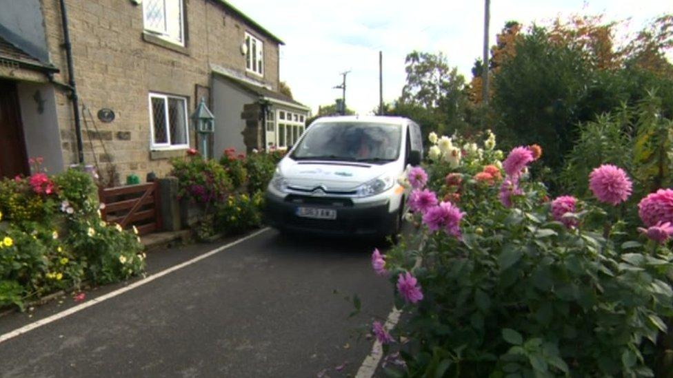 Sheffield council back down over 'dangerous' dahlias