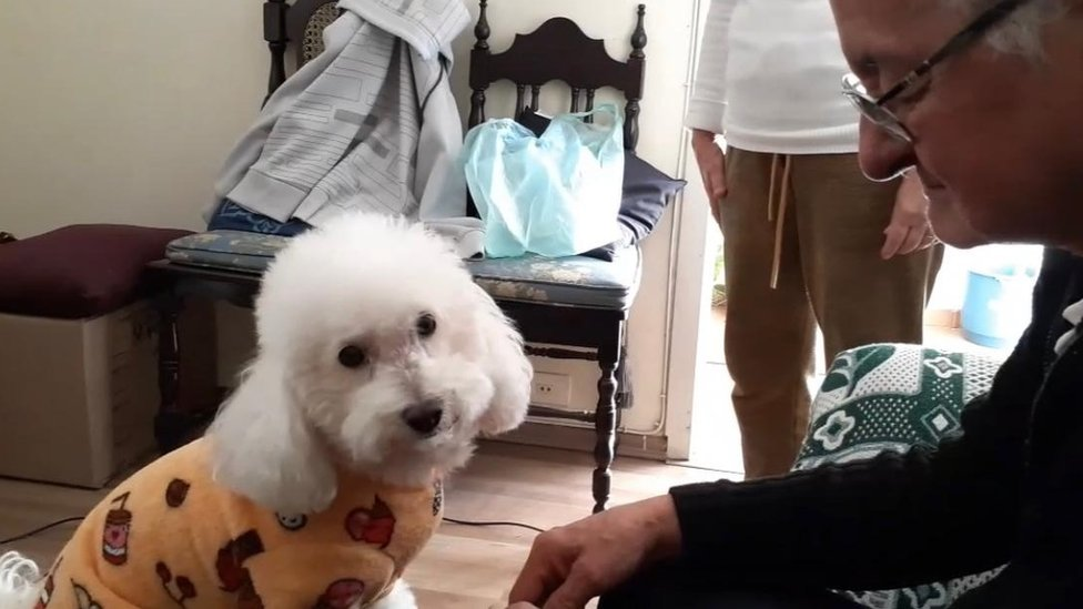 O idoso Jorge Torres, de óculos e cabelos brancos, sentado ao lado de sua cachorrinha, também idosa