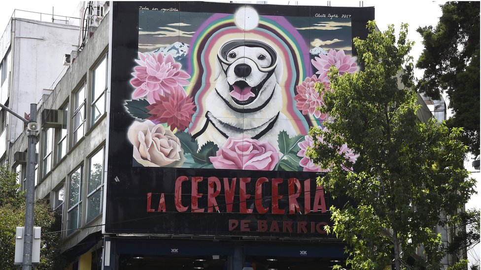 View of a large mural paint in honour to Frida, the Mexican Navy's rescue dog in Mexico City