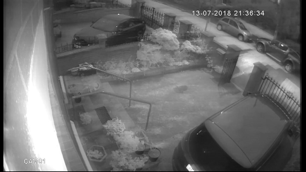 CCTV camera shows attack on Adams property