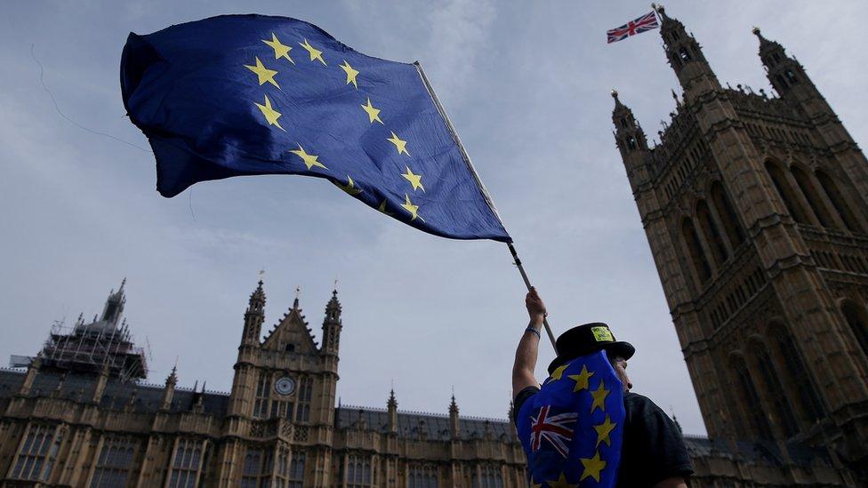İngiltere'de parlamento önünde AB bayrağı