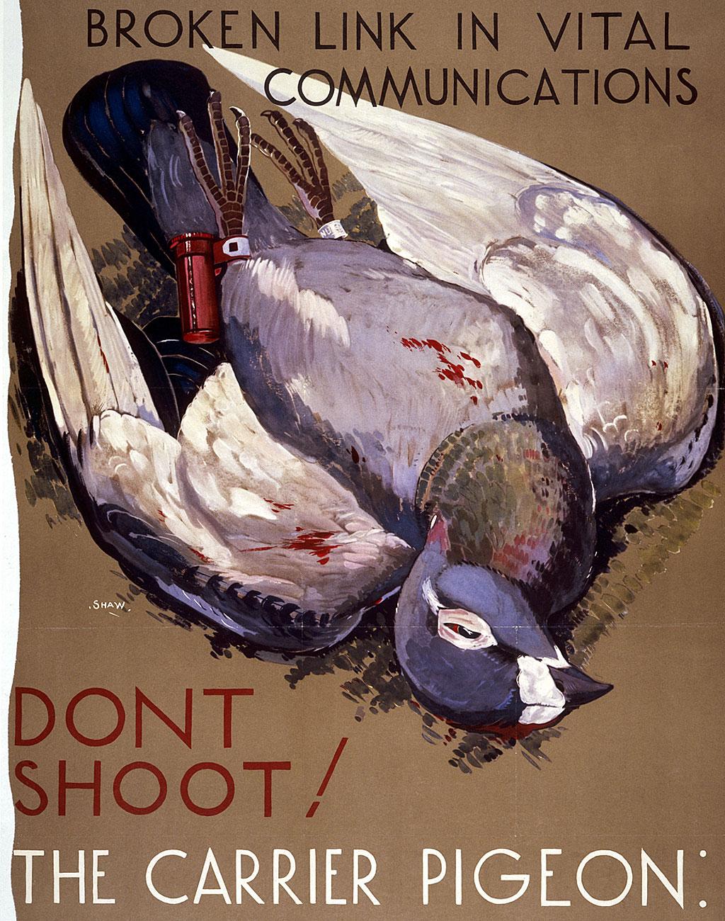 Afiches como este le pedían a la gente que no mataran a las palomas pues podían interferir con comunicaciones vitales.