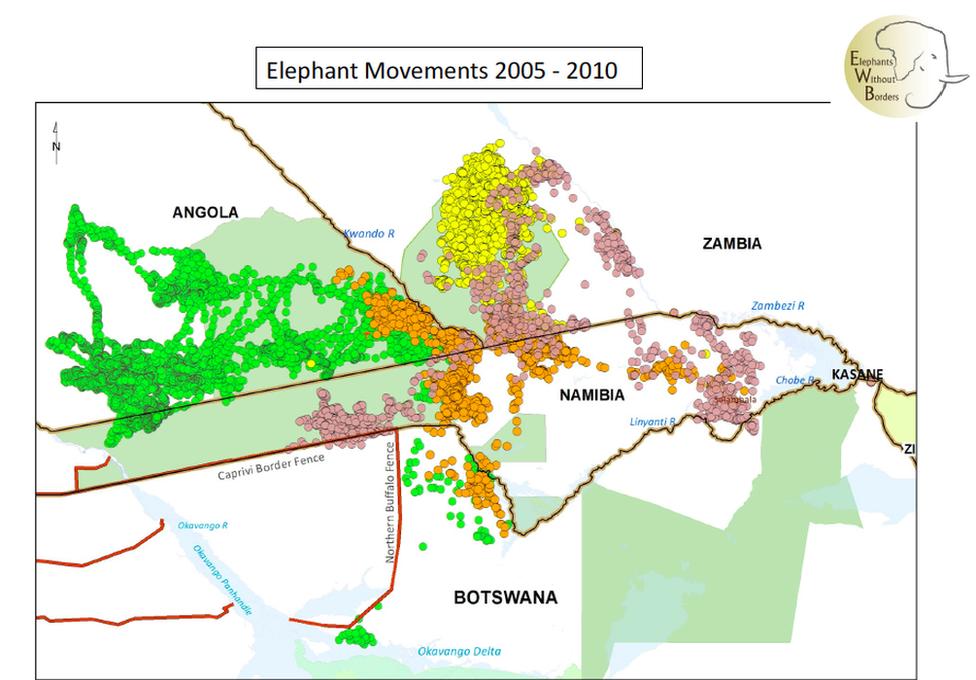 Elephants movements 2005 -2010