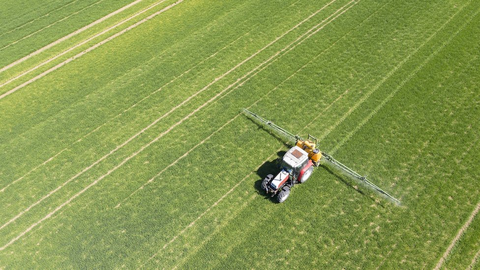 Fertilización en el campo