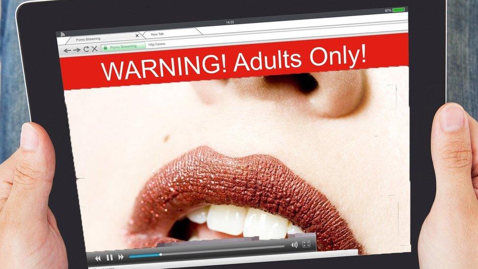 مادة إباحية على الإنترنت.
