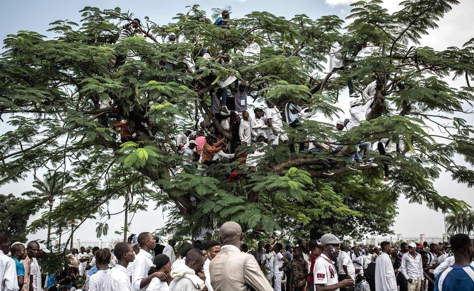 وفي عاصمة جمهورية الكونغو الديمقراطية ، كينشاسا، تسلق الناس الأشجار لمشاهدة حفل تنصيب الزعيم فيلكس تشيزيكيدي رئيسا في شهر يناير/كانون الثاني