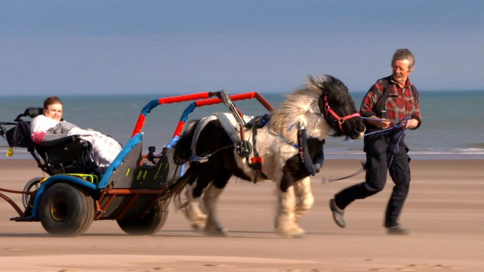 A pony and 'chariot' give wheelchair users chance to explore new places