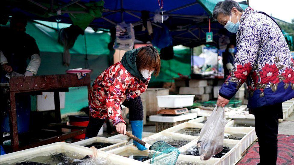 باعة الأسماك يعملون في سوق مفتوح في مدينة ووهان في مقاطعة هوبي