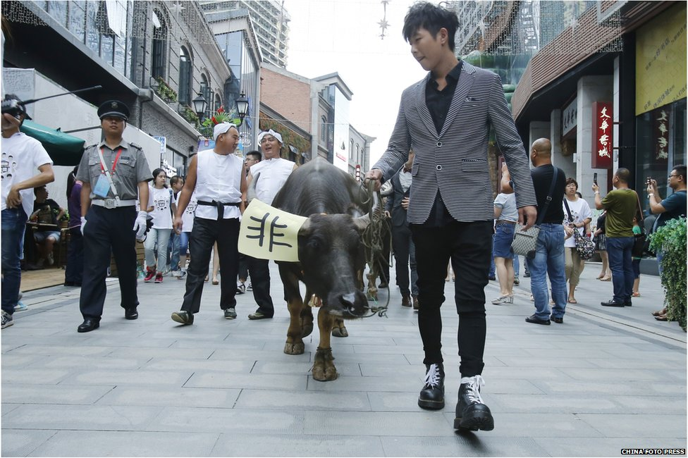 A man hauls a cow on Han Street the day before Chinese traditional Qixi Festival on 19 August 2015 in Wuhan, Hubei Province of China.