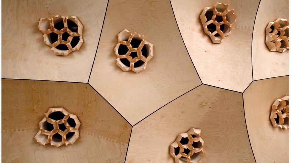 Pine cone roof - HygroSkin