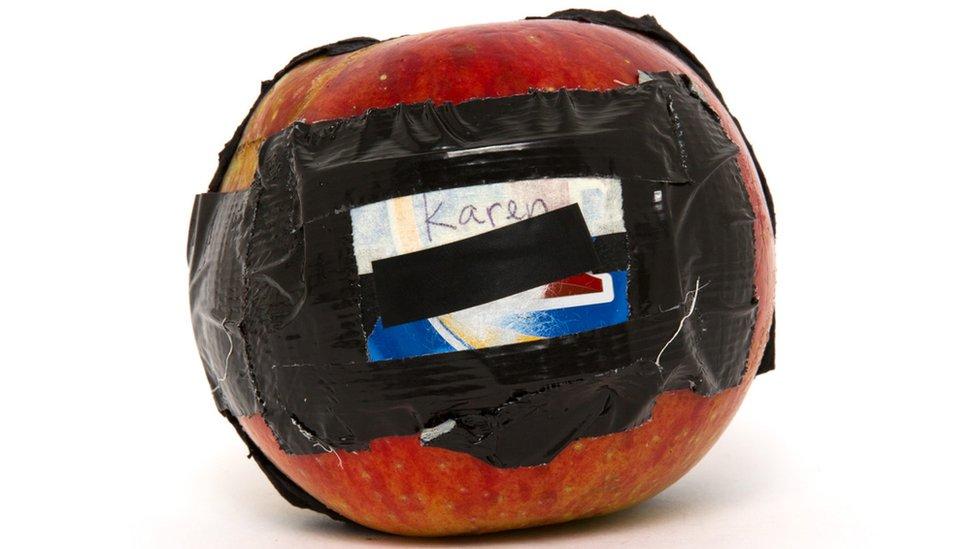 Apple pinhole camera
