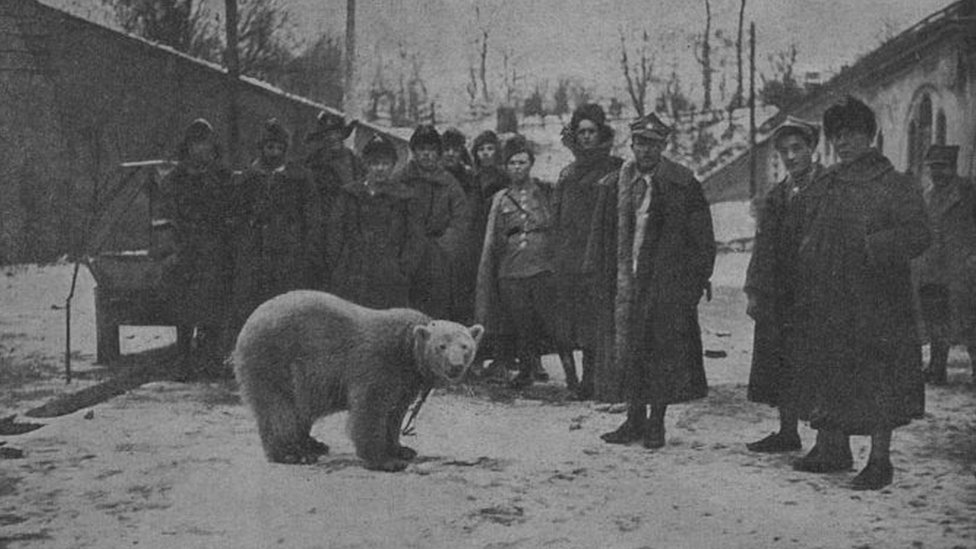 Polar bear Baśka and soldiers