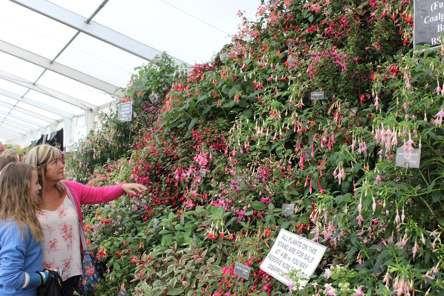Bethan a Hana yn edmygu'r arddangosfa flodau // Bethan and Hana admiring the flower display