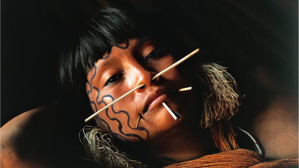 Young Yanomami woman with fine palm sticks through her face