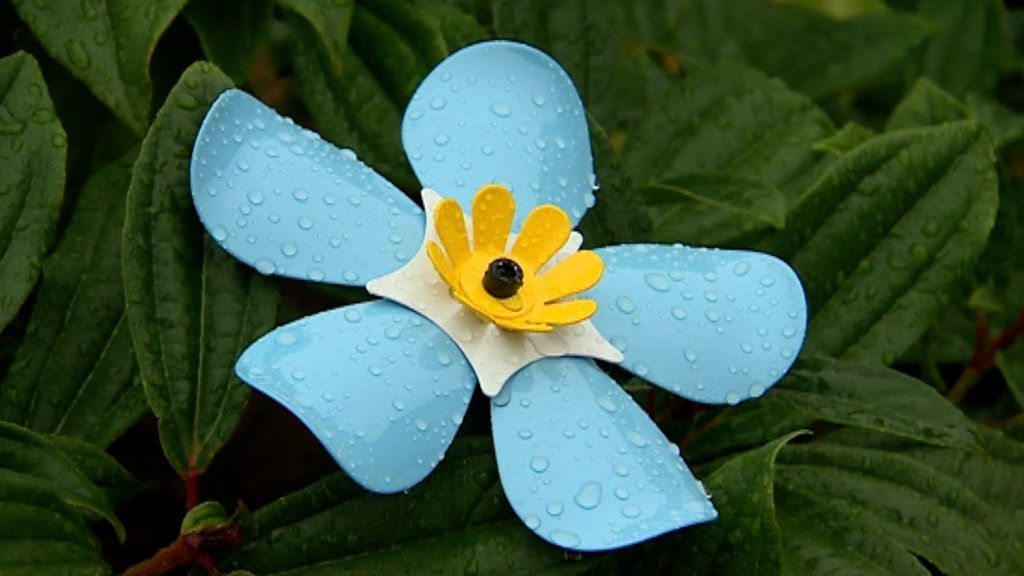 Metal forget-me-nots raise thousands for cancer patients