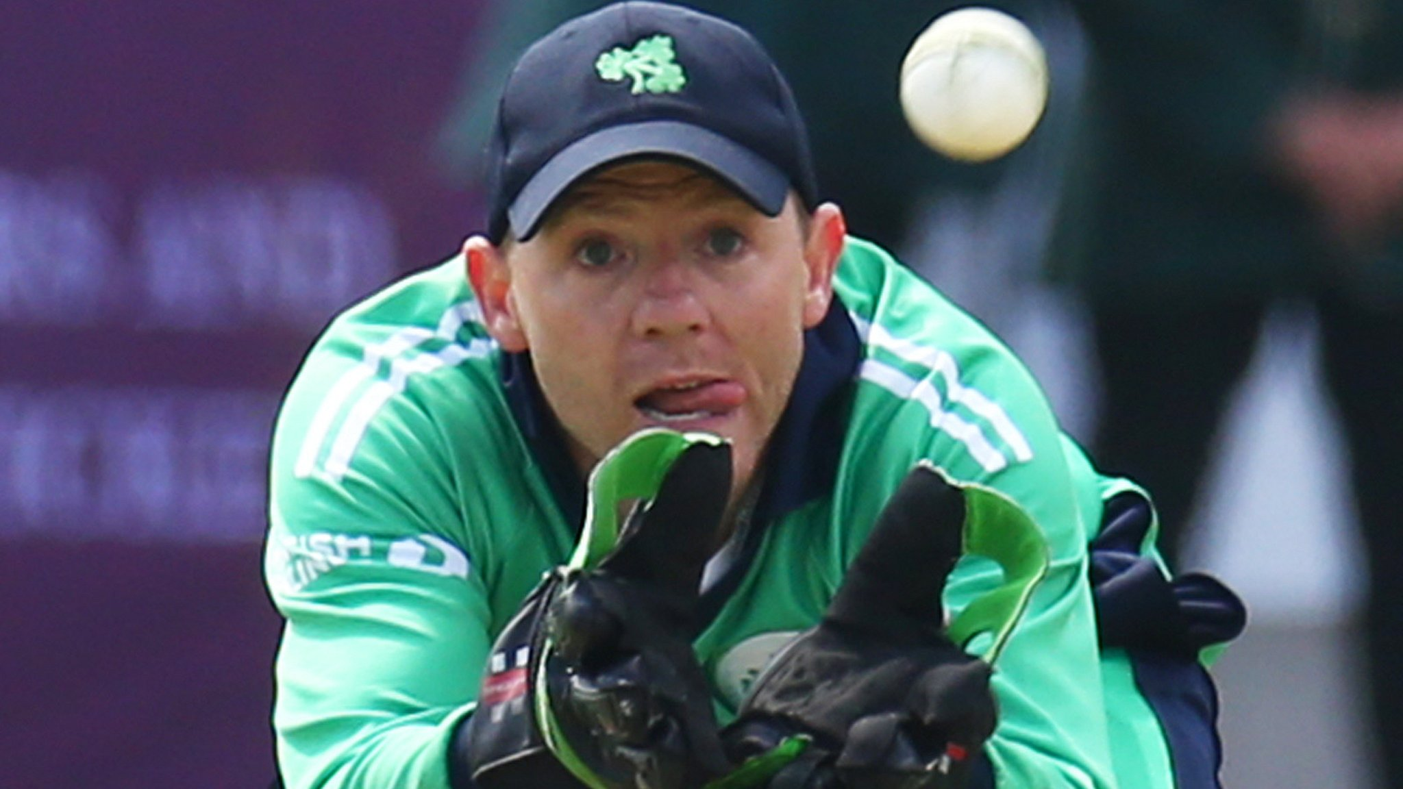 Niall O'Brien: Ireland and Warriors wicketkeeper retires at 36