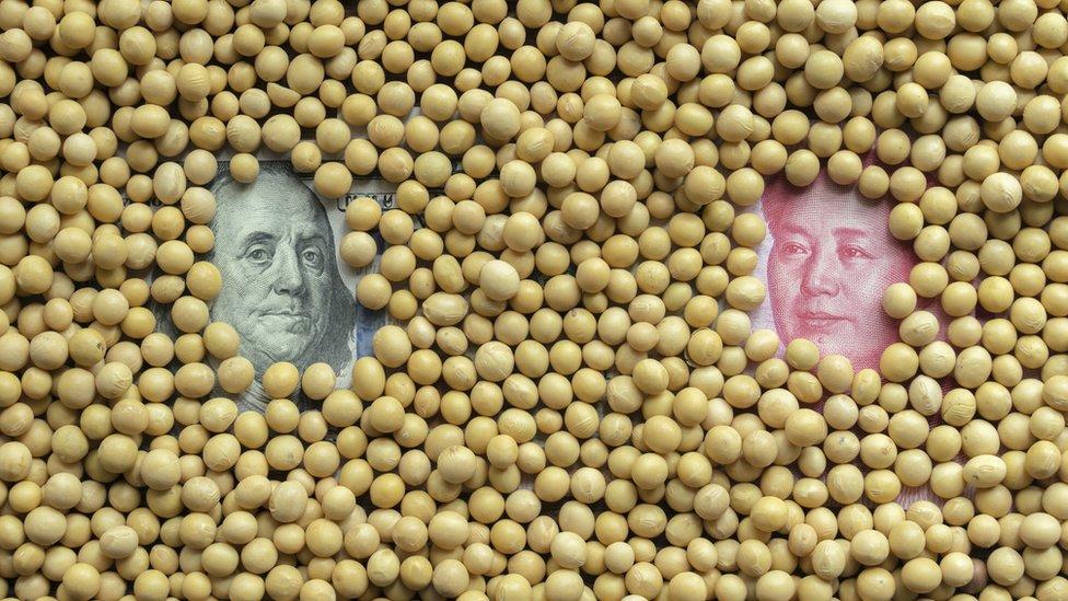 中國徵稅涉及大豆等美國農產品