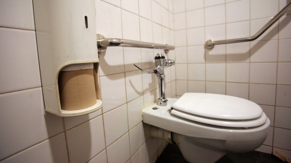 Toilet paper in a toilet in Johannesburg (file photo)