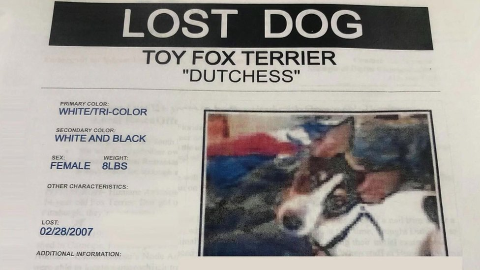 Missing poster for Dutchess