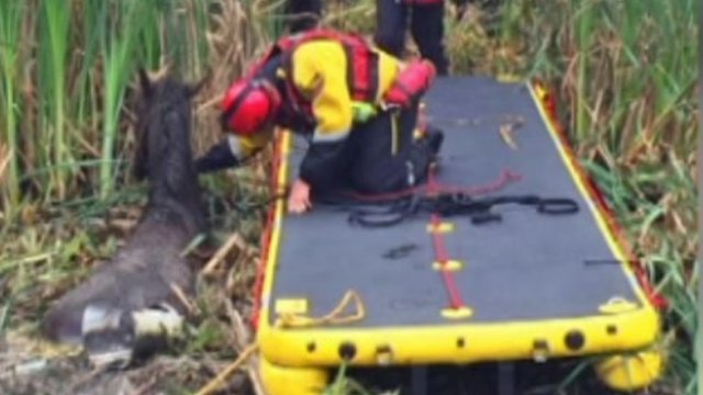 Dutch crew rescued from 'near-capsize' thumbnail