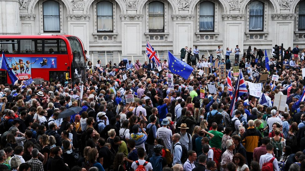 Anti-Brexit demonstrators in Whitehall