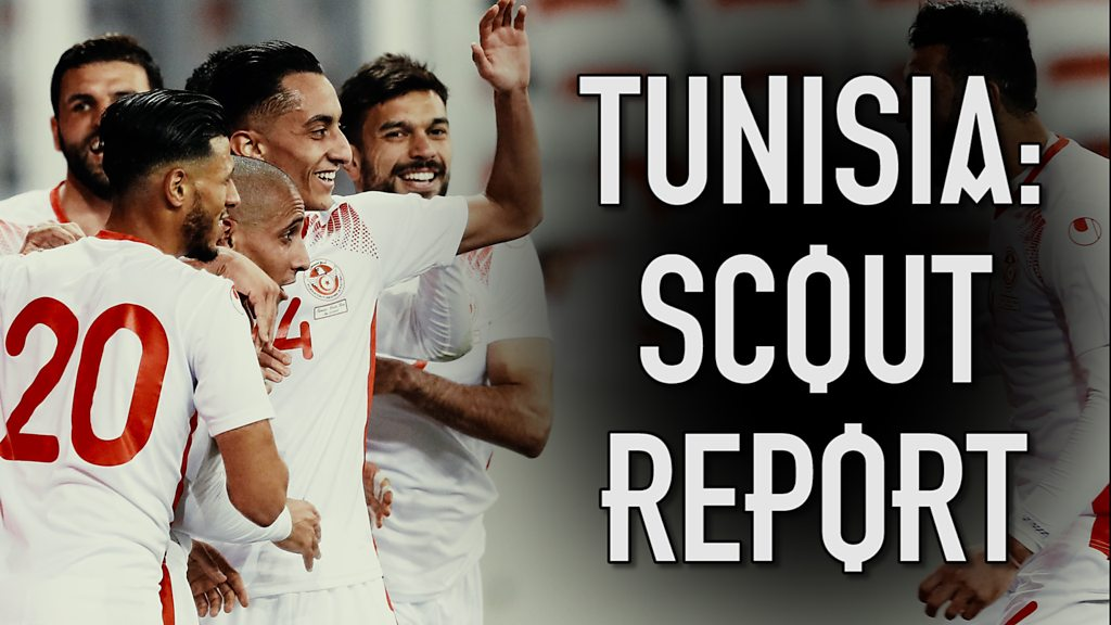 World Cup: Dion Dublin scouts England's first opponents Tunisia