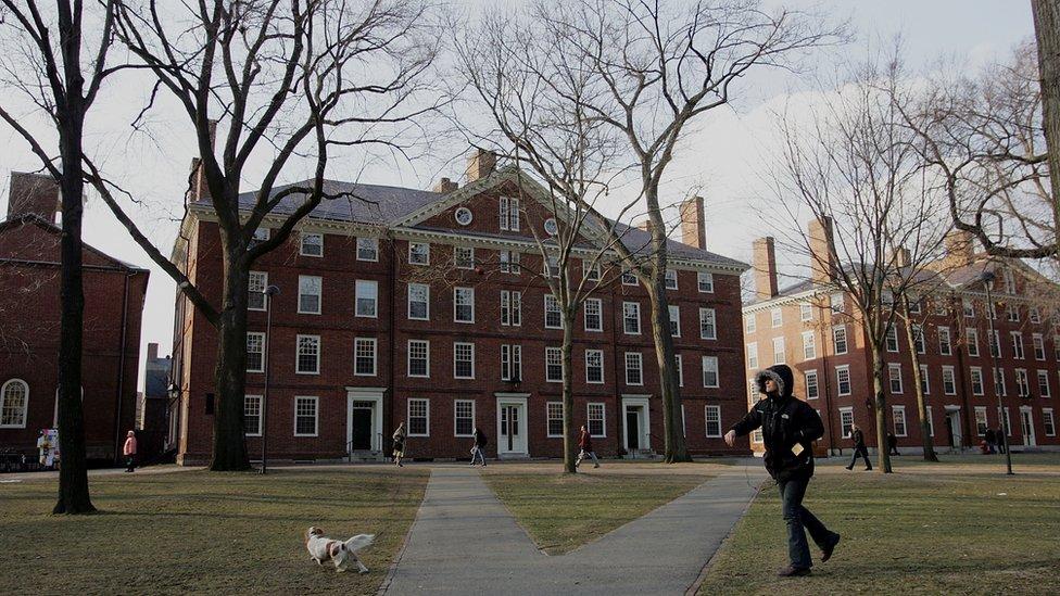 Harvard's campus in Cambridge, Massachusetts