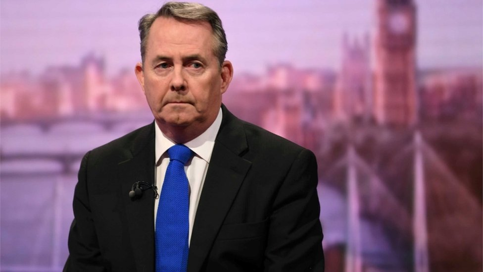 Remainer MPs trying to steal Brexit, says Liam Fox