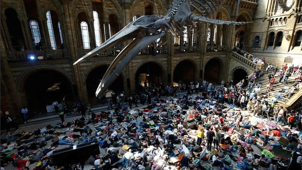 Extinction Rebellion: Climate protesters at museum