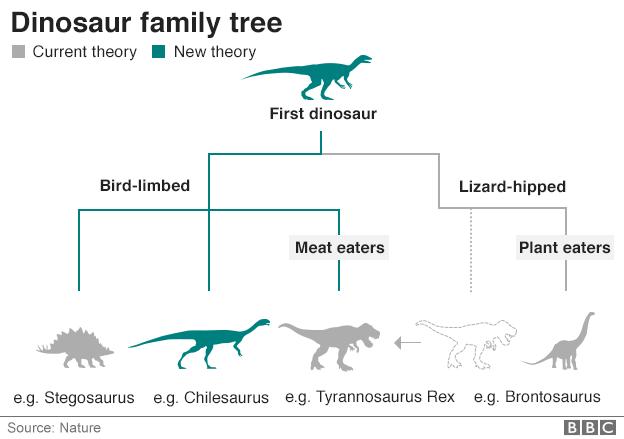 Dinosaur family tree