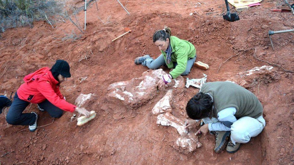 Paleontólogos desenterrando restos de Ingentia prima en San Juan