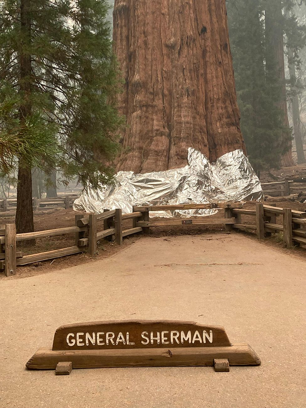 La base de General Sherman envuelta en una manta de aluminio