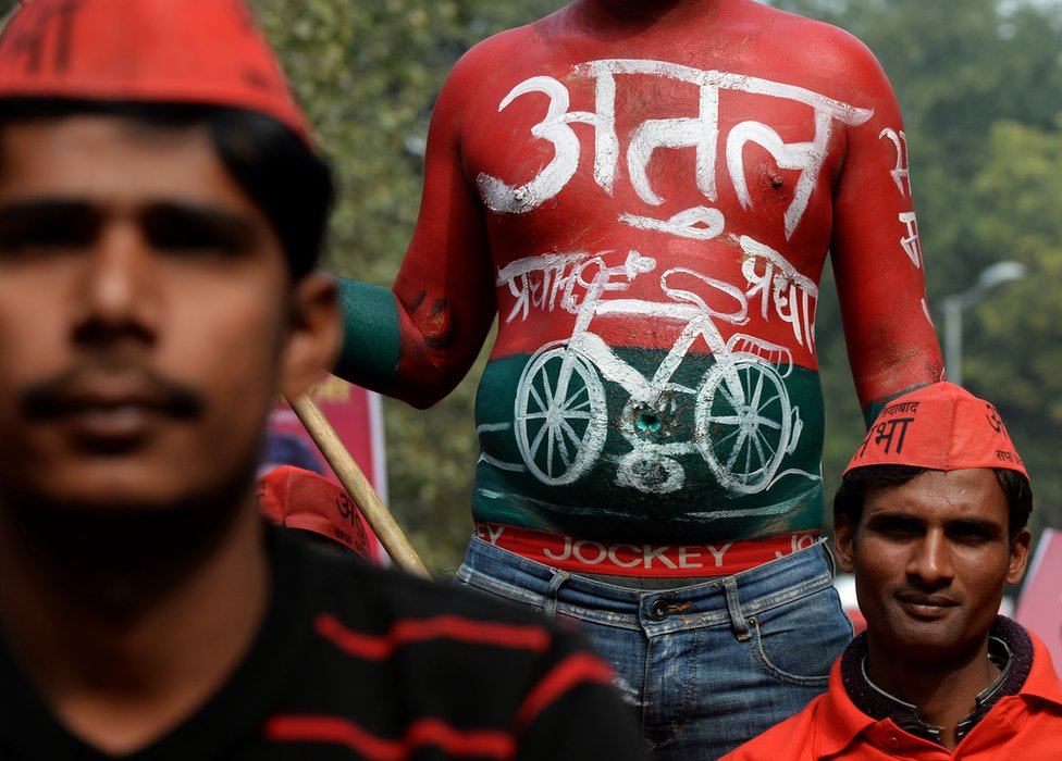 A supporter, his body painted in the Samajwadi Party colours and logo, looks on during a bicycle rally attended by India's Uttar Pradesh state Chief Minister Akhilesh Yadav in New Delhi on February 23, 2014.