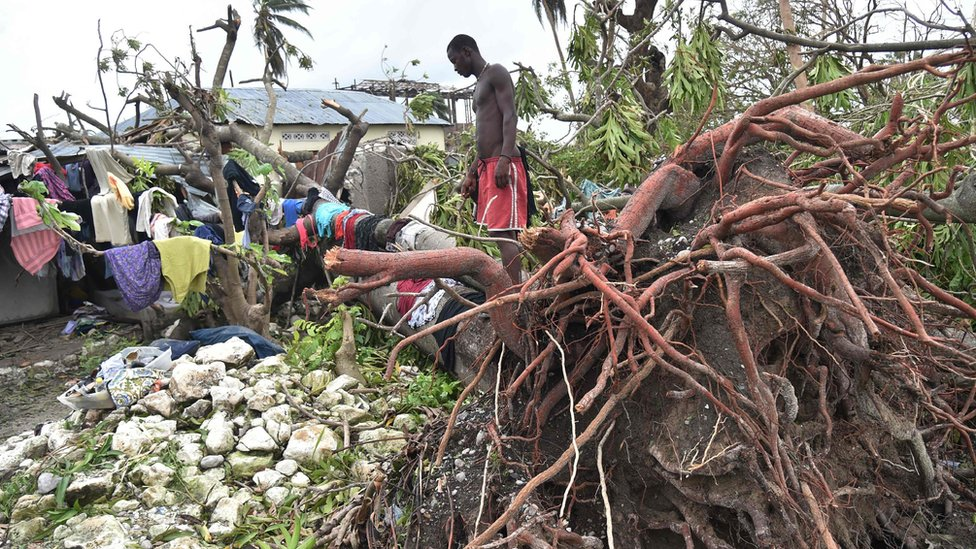 A man looks at his home crushed by a tree in Haiti after the hurricane