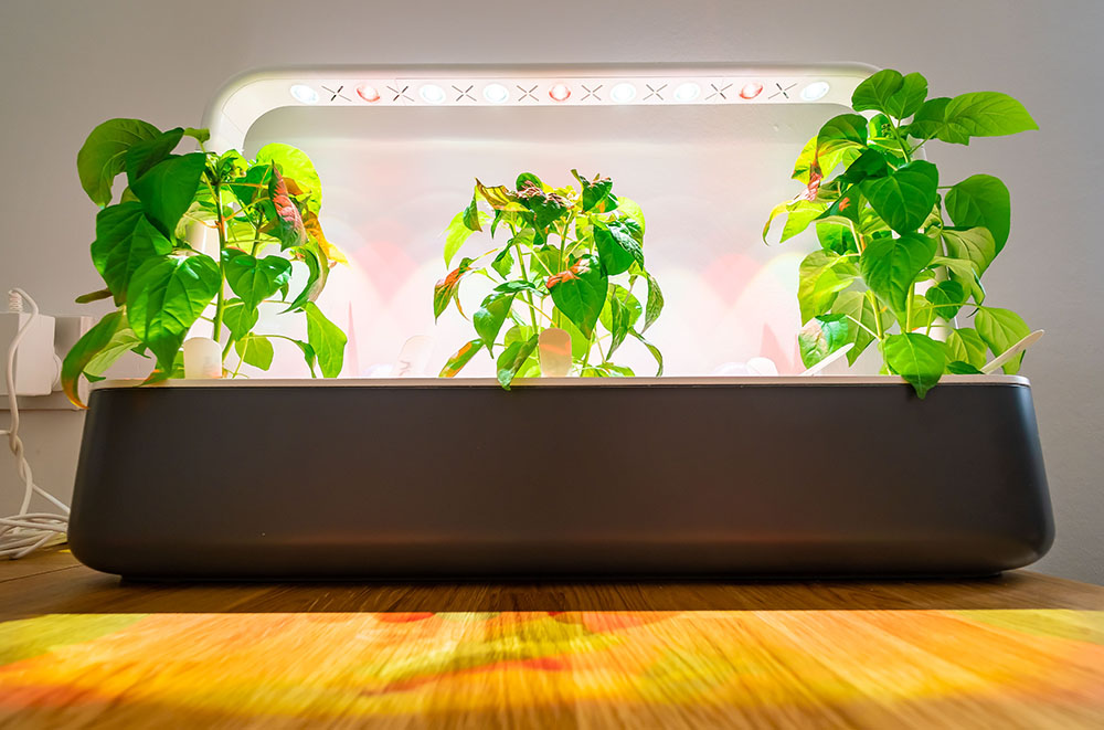 Indoor growing kit