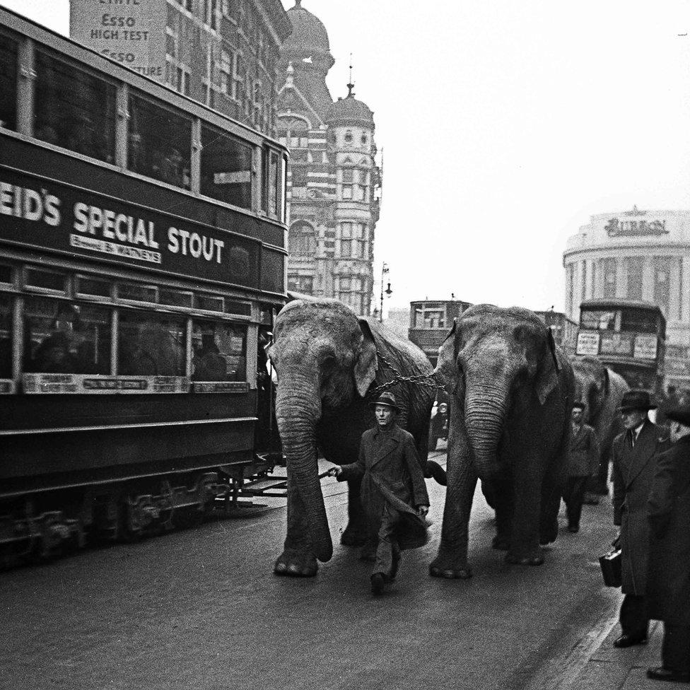 Circus in town, London 1937