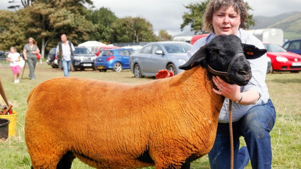 Helen Roberts with one of her sheep