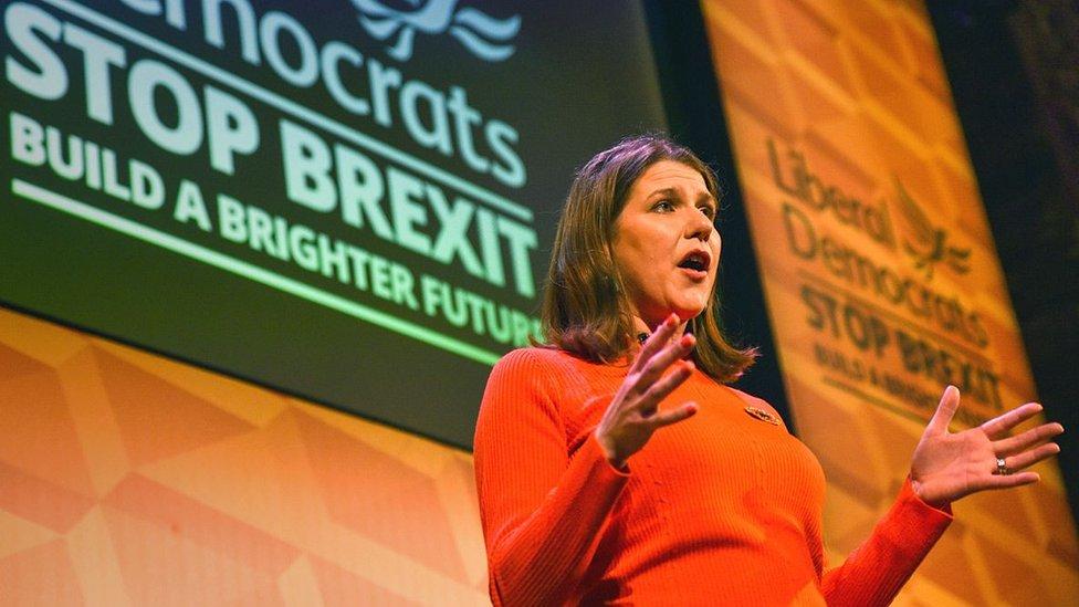 Liberalne demokrate zagovoraju ostanak u Evropskoj uniji