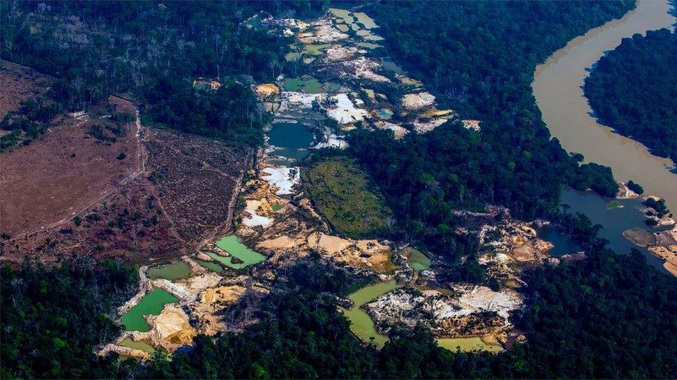 Brezilya Amazonları'nda altın madeni