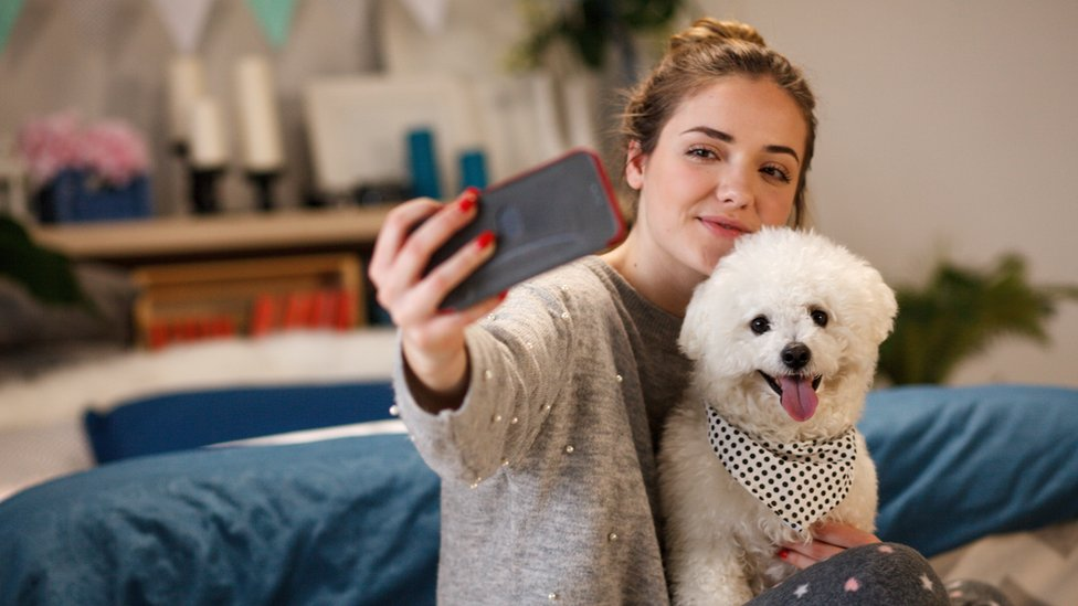 Girl and dog taking photo with phone