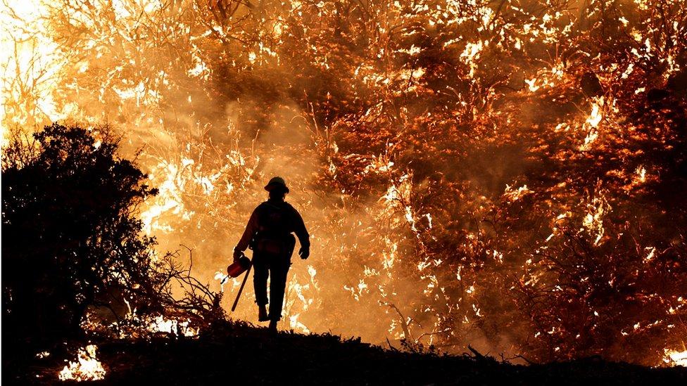 Šumski požari u Kaliforniji