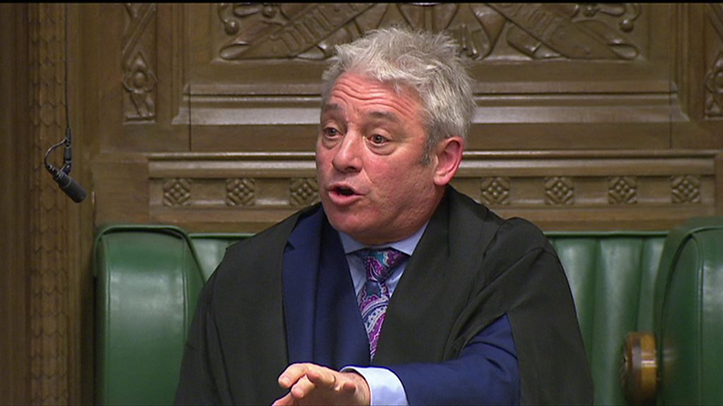 John Bercow: 'Anti-Brexit sticker belongs to my wife'