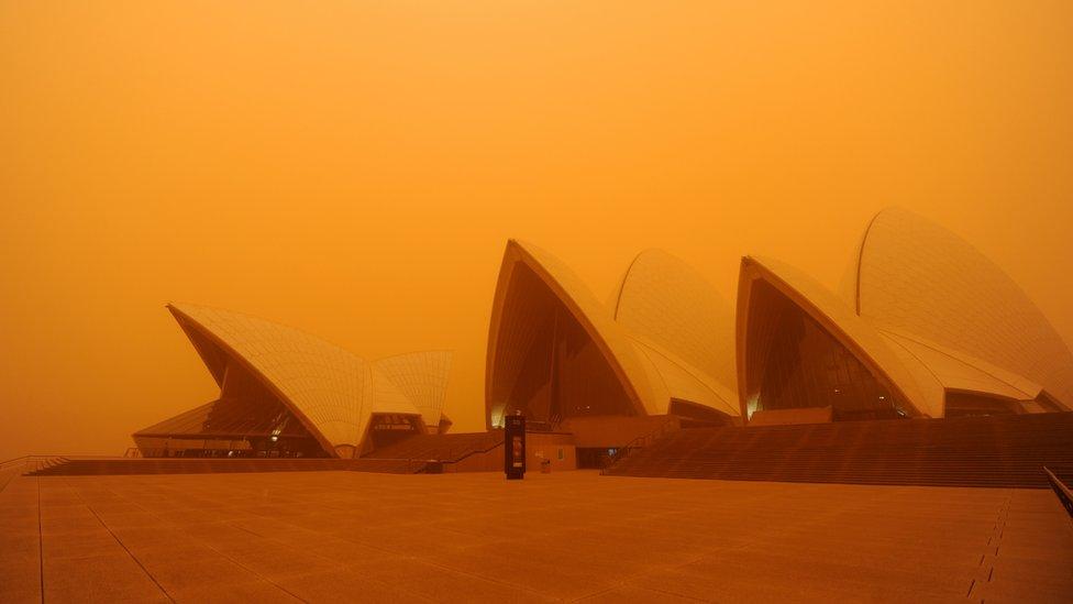 Peščana Oluja u Sidneju 2009. godine