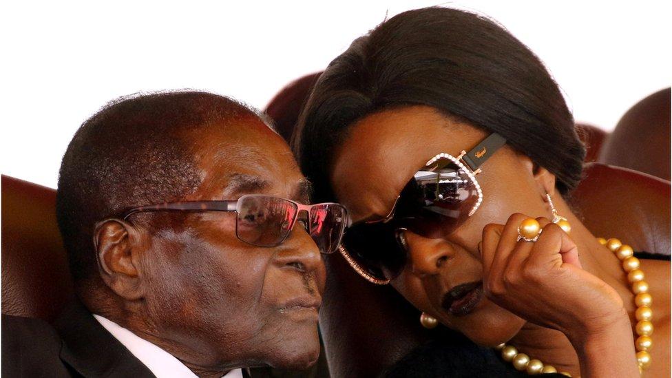 Grace Mugabe, Zimbabwe