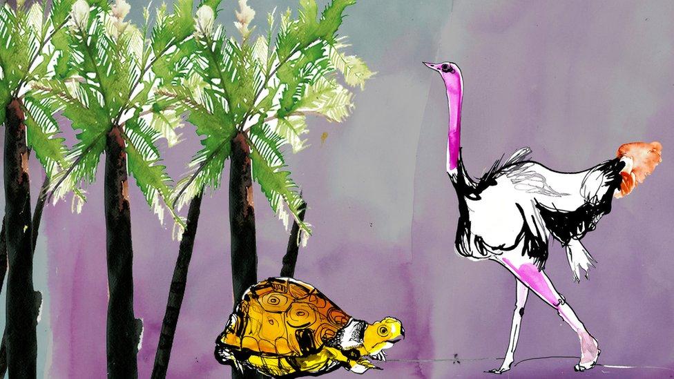 Ilustracija kornjače i noja