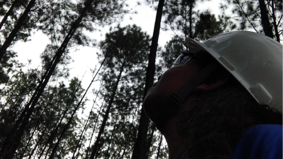 Paloma, wearing her hard hat and goggles, in the forest