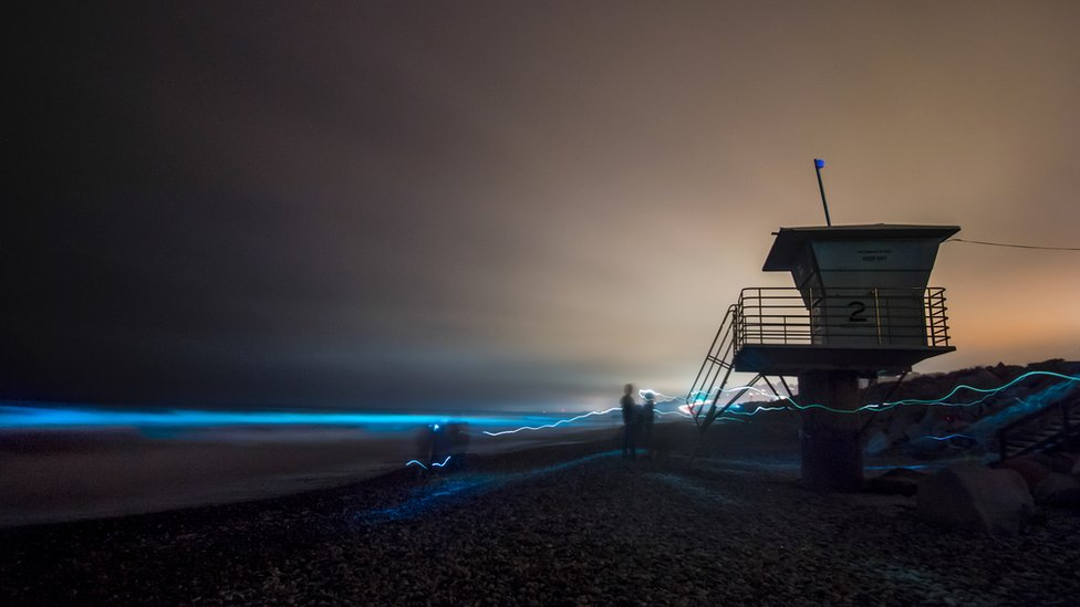 The red tide is bringing a beautiful light night-time display to San Diego beaches